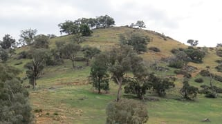 Lot 147 Tarrants Gap Road Wyangala NSW 2808