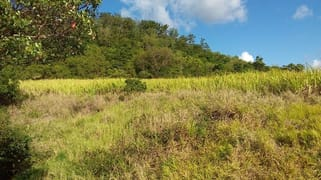 Lot 56 Yakapari-Seaforth Road Mount Jukes QLD 4740