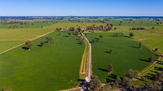 'Pine Grove'/1623 Redlands Road Corowa NSW 2646