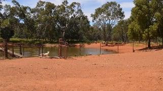 * Glenhaven Park Cobar NSW 2835
