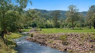 2956 Nerang Murwillumbah Road Natural Bridge QLD 4211