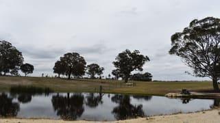 1820 Range Road Mummel NSW 2580