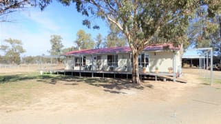 8308 Lachlan Valley Way Forbes NSW 2871
