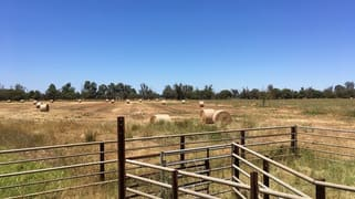 Lot 203 Cnr Jackson & McLarty Roads Uduc WA 6220