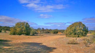 Lot 91 Sturt Highway Blanchetown SA 5357