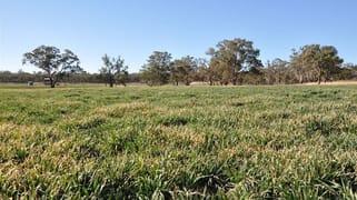 705 Coolah Rd, 'Culbara' Cassilis NSW 2329