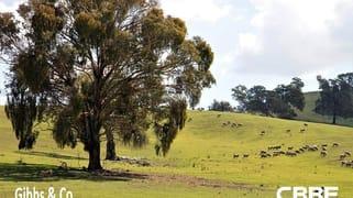 """tillararra"" 890 Perks Road, Boorowa NSW 2586"