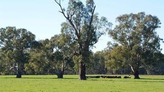 Avalon/3931 Old Narrandera Rd, Currawarna via Wagga Wagga NSW 2650