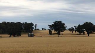 Castlereagh Highway Gulgong NSW 2852