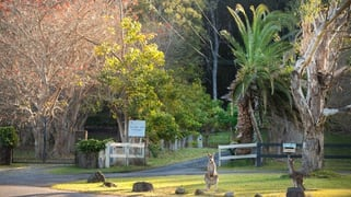 65B Bundle Hill Road Bawley Point NSW 2539