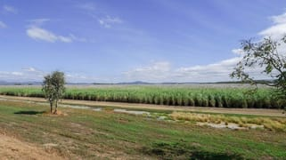 2310 Mareeba-Dimbulah Road Arriga QLD 4880