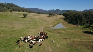 ' Flaggy Valley', Timor Road Coonabarabran NSW 2357