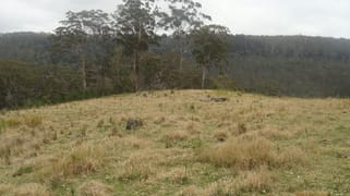 Lot 50 Sykes Gap Road Upper Tooloom NSW 2475