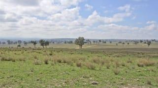 . 'Summerhill Aggregation', Summerhill Rd Cassilis NSW 2329