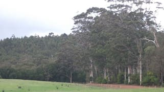 Lot 8691 Wheatley Coast Road Northcliffe WA 6262
