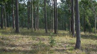 Lot 56 Off Green Hills Road Cannon Creek QLD 4310