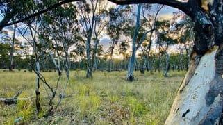 588 Nullawa road Premer NSW 2381