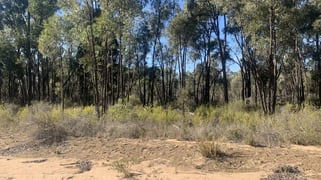 1110 MANCERS LANE Binnaway NSW 2395