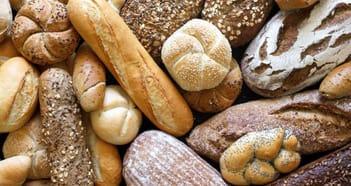 Takeaway Food Business in NSW