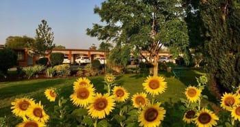 Accommodation & Tourism Business in Quirindi