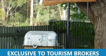 Caravan Park Business in Tenterfield