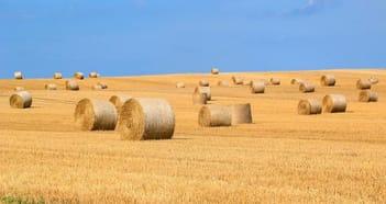 Rural & Farming Business in WA