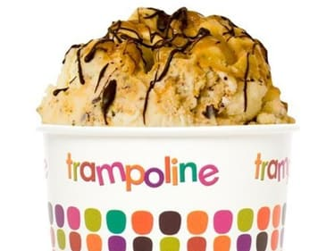 Trampoline Gelato Palmerston City franchise for sale - Image 2