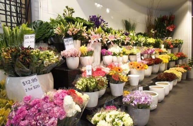 Florist / Nursery business for sale in Camberwell - Image 1
