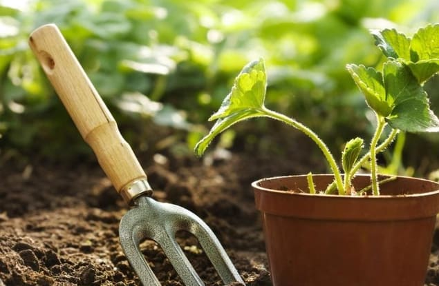 Gardening business for sale in Whittlesea - Image 2