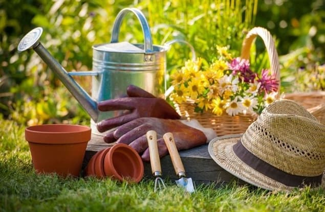Gardening business for sale in Whittlesea - Image 3