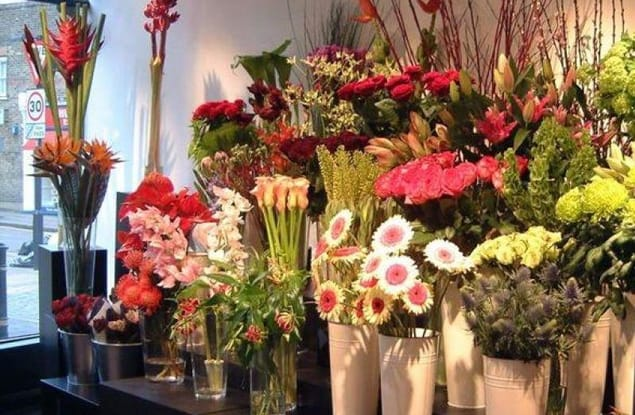 Florist / Nursery business for sale in Blackburn - Image 1