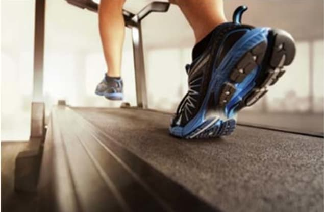 Sports Complex & Gym business for sale in City & North QLD - Image 1