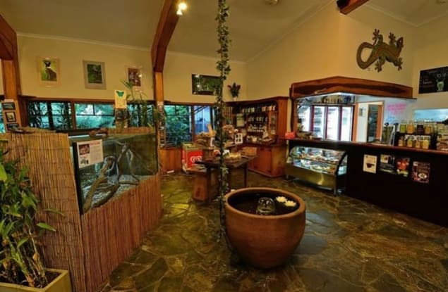 Accommodation & Tourism business for sale in Cape Tribulation - Image 3