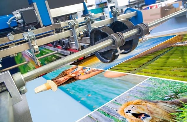 Paper / Printing business for sale in Kenmore - Image 1
