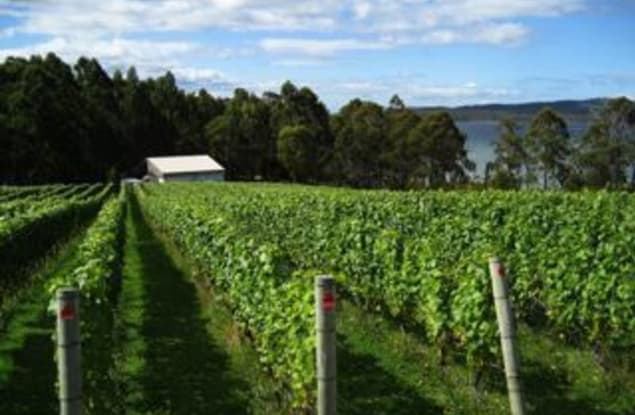 Rural & Farming business for sale in VIC - Image 3
