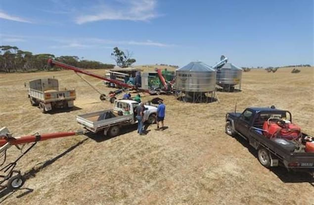 Rural & Farming business for sale in Gladstone - Image 3