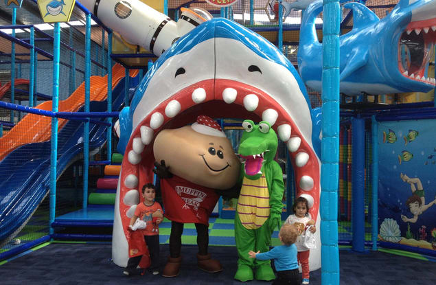 Croc's Playcentre Bethania franchise for sale - Image 1