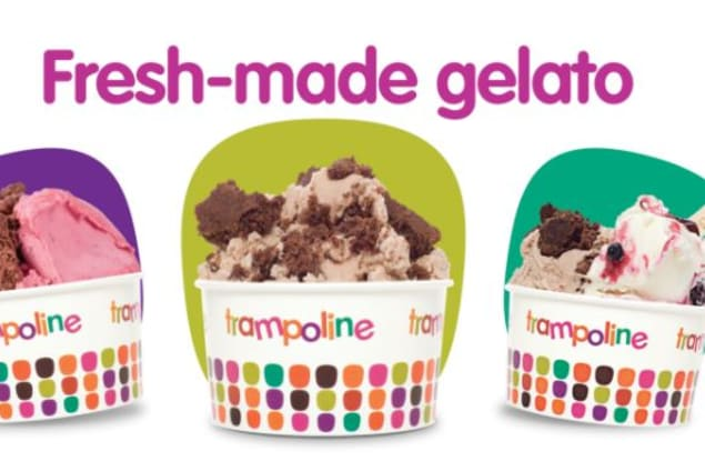 Trampoline Gelato Brisbane City franchise for sale - Image 1
