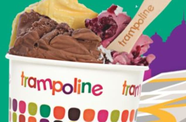 Trampoline Gelato Brisbane City franchise for sale - Image 2