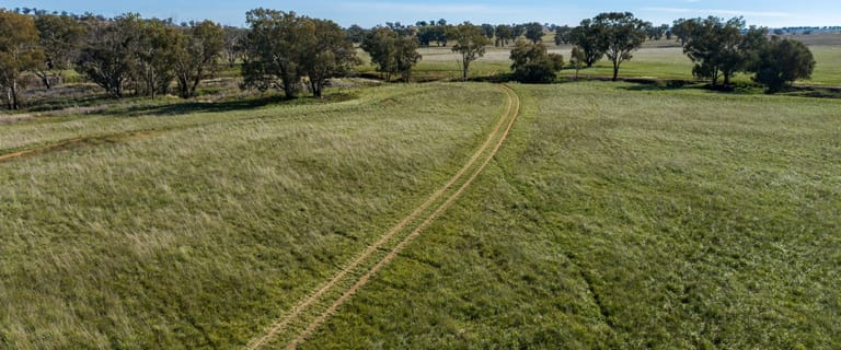 Rural / Farming commercial property for sale at 401 Catombal Road Catombal Road Cumnock NSW 2867