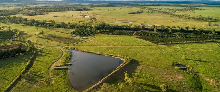 "Other commercial property for sale at ""Gayndah Orchard Aggregation"" 15851 Burnett Highway Gayndah QLD 4625"