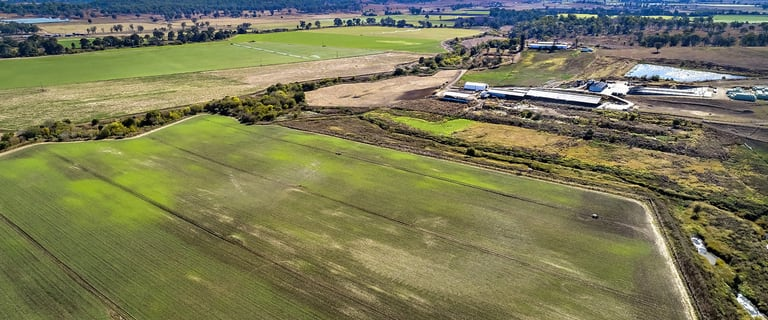 Rural / Farming commercial property for sale at 200 Telemon Homestead Road Innisplain QLD 4285
