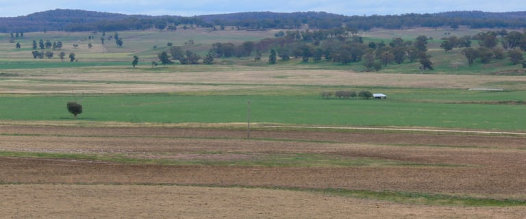 Rural / Farming commercial property for sale at 1923 Boomley Road Elong Elong NSW 2831