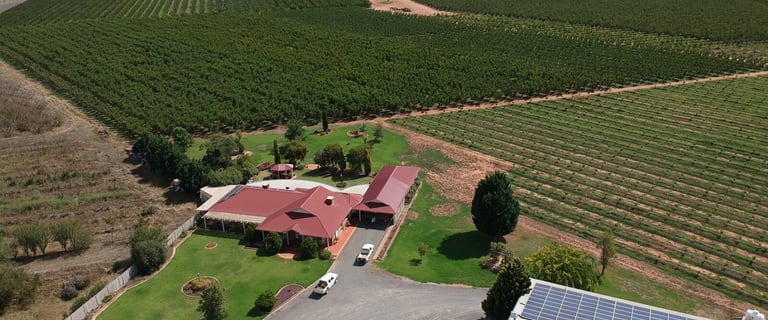 Rural / Farming commercial property for sale at 3384 Murray Valley Highway Cobram VIC 3644