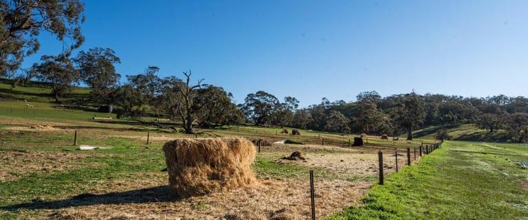 Rural / Farming commercial property for sale at Karinya Station 3872 Pipeline Road Moculta SA 5353