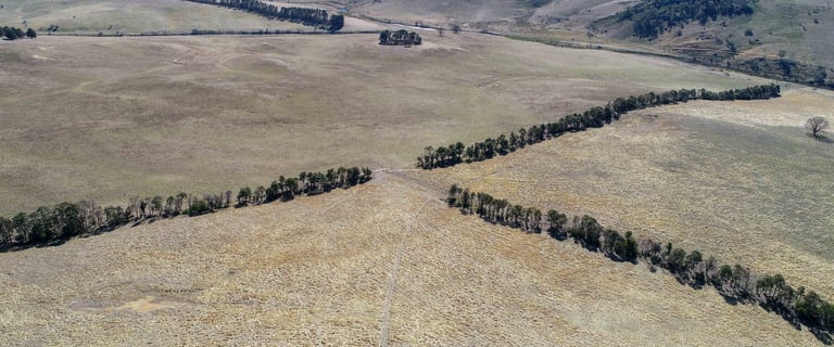 Rural / Farming commercial property for sale at Walcha NSW 2354