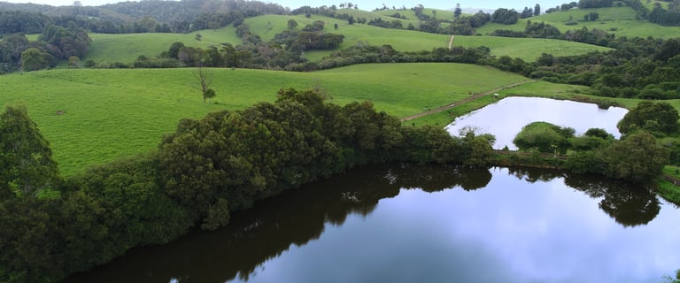 Other commercial property for sale at Dorrigo NSW 2453