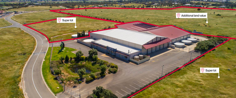 Development / Land commercial property for sale at 77 Big Olive Grove Tailem Bend SA 5260