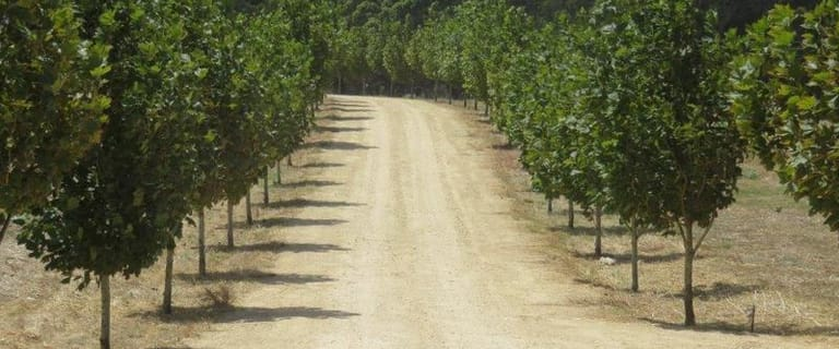 Rural / Farming commercial property for sale at 598 Caraban Road Caraban WA 6041