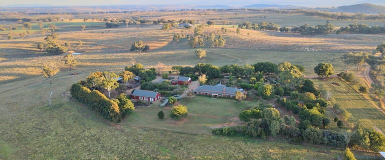 "Rural / Farming commercial property for sale at ""Restalrig"" Hartfield Road Young NSW 2594"